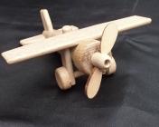 Small plane LEON